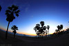 Sunset at Venice Beach - LA by Richard E. Ducker