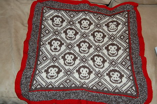 front of sleepy monkey blanket