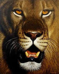 nose, animal, big cats, lion, tiger, snout, mammal, roar, fauna, close-up, whiskers, illustration, wildlife,
