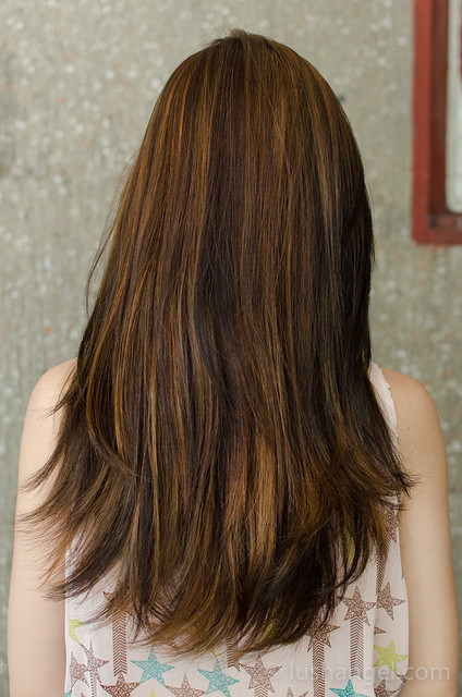 hairshaft-highlights
