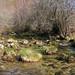 río Verdugo