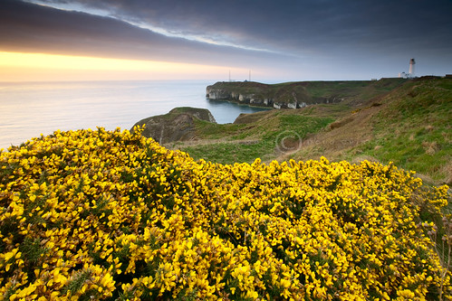 Spring Dawn - Flamborough Head Lighthouse