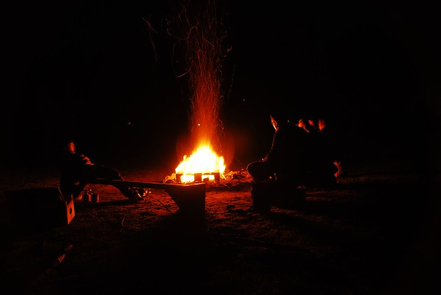 Funny Campfire Hot Dog Sticks
