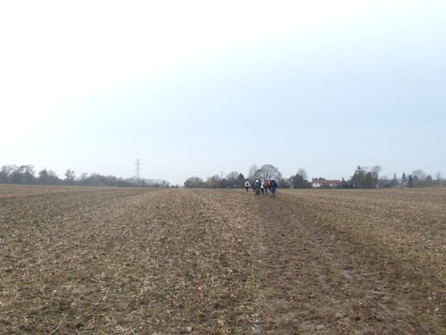 One last ploughed field......