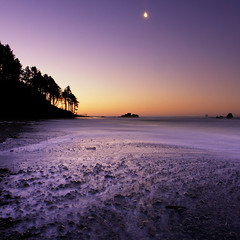 Setting Moon at Sunrise, Ruby Beach, ONP