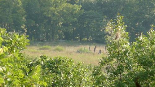 bike hiking trail kansas shawnee 2008 olathe