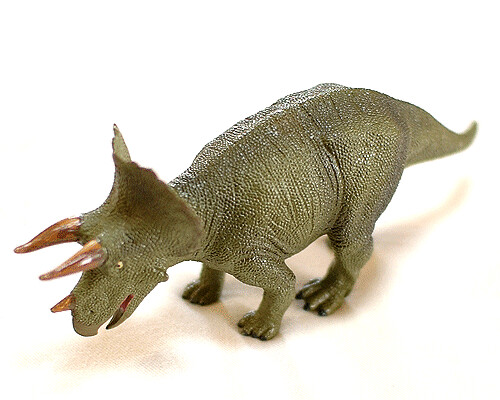 トリケラトプスの画像 p1_16