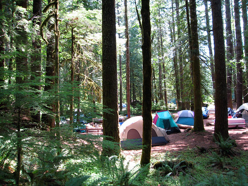 forest tents olympicnationalpark staircasecampground