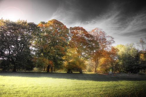 fall field photoshop canon landscape massachusetts foliage lincoln hdr highdynamicrange drumlinfarm canonefs1785mm 40d falllandscape patrickcampagnone