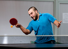 individual sports, table tennis, sports, ball game, racquet sport,