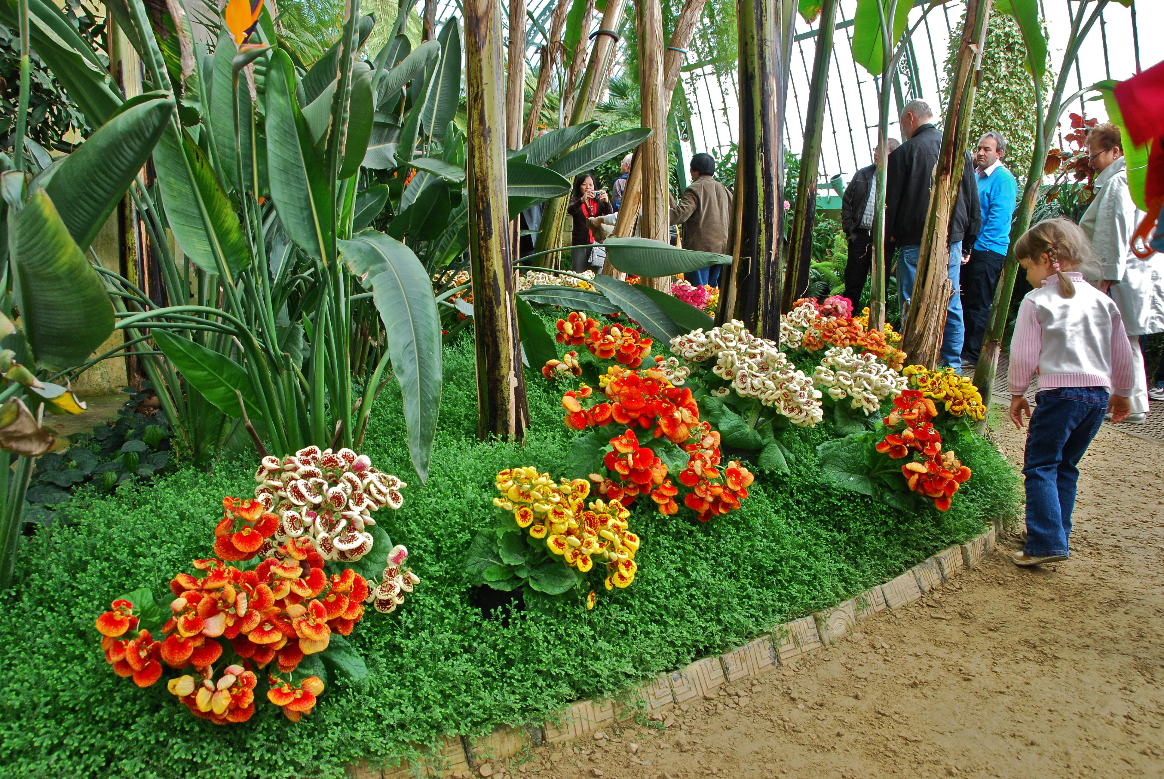 Parterre de fleurs multicolores au jardin d 39 hiver flickr for Parterre de fleurs