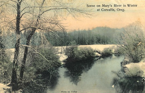 Scene on Marys River in winter near Corvallis, Oregon