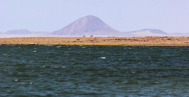 Lago Turkana - Lake Turkana