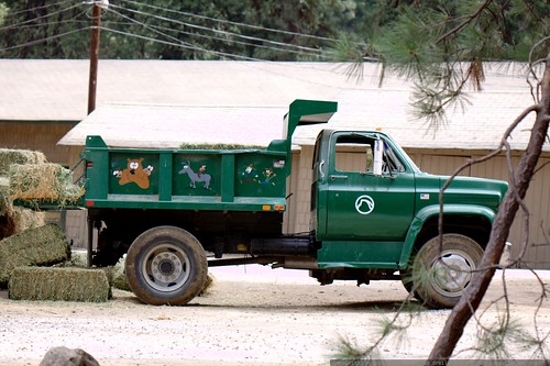 yosemite park & curry company truck    MG 4351