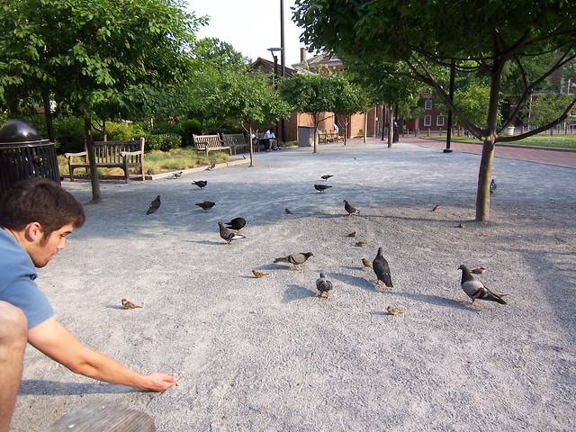 nathan feeds the birds