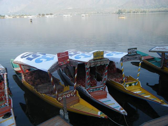 Boats on Dal Lake, India