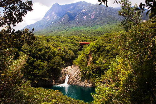 ocean wood bridge trees sea sky cloud mountain lake tree art fall nature water rock japan clouds forest river landscape japanese waterfall saturated woods stream view pacific postcard hill natur scenic kagoshima clear frame saturation framing yakushima prefecture clearity rasenkantenstein