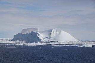 602 Weddell Sea