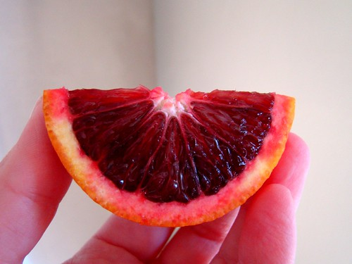 Blood Red Orange