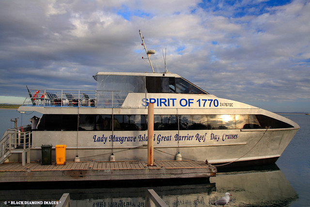 Spirit of 1770 Cruise Boat -Town of 1770 - Central  Queensland