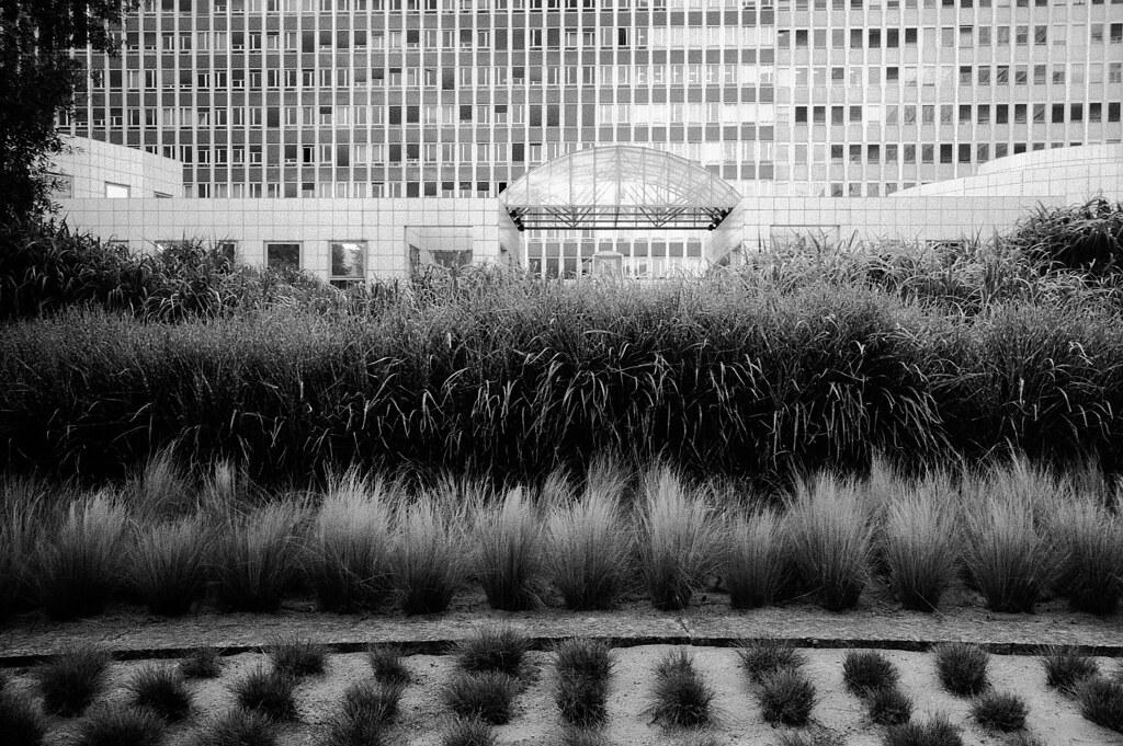 Jardin atlantique paris 2009 explore thomas claveirole for Jardin atlantique