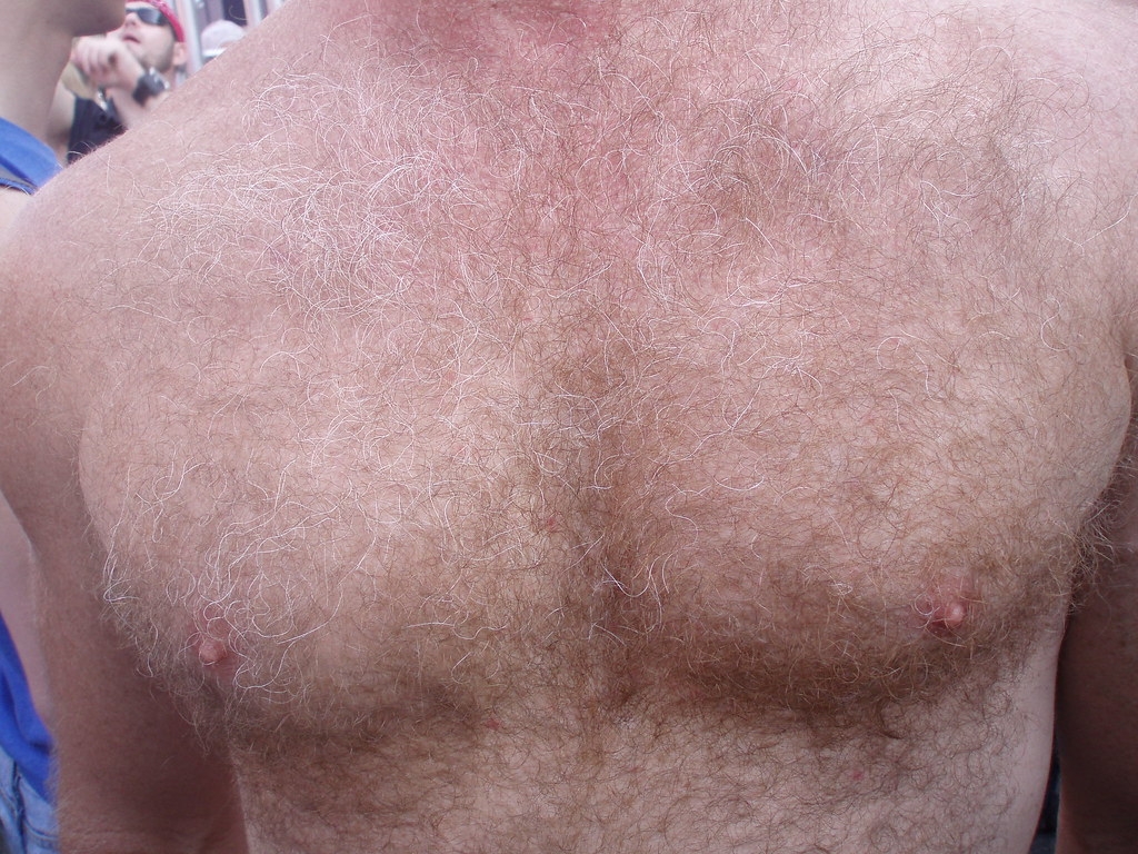 HELLA HOT & HAIRY MAN CHEST ! ~ FOLSOM STREET FAIR 2009 ! ( safe photo )