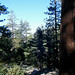 Small photo of Icehouse Canyon