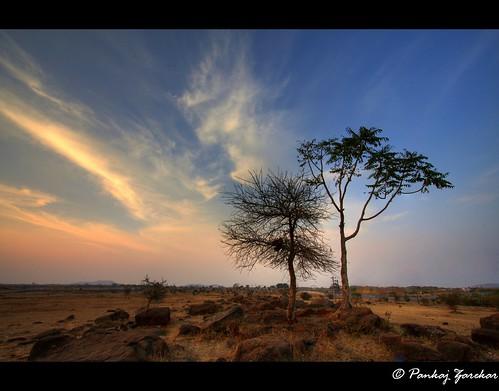sunset sky colors evening dreamland companionship canonefs1022mm naturesfinest skycloudssun vosplusbellesphotos pankajभटकंतीunlimited tadka09wk8