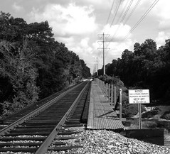 BNSF Railroad Trestle over Spring Creek, Tomball, Texas 0815091012BW
