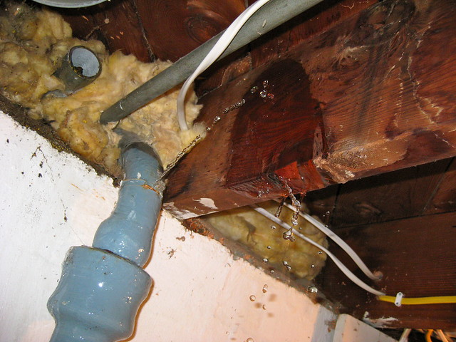 burst drain pipe in basement flickr photo sharing