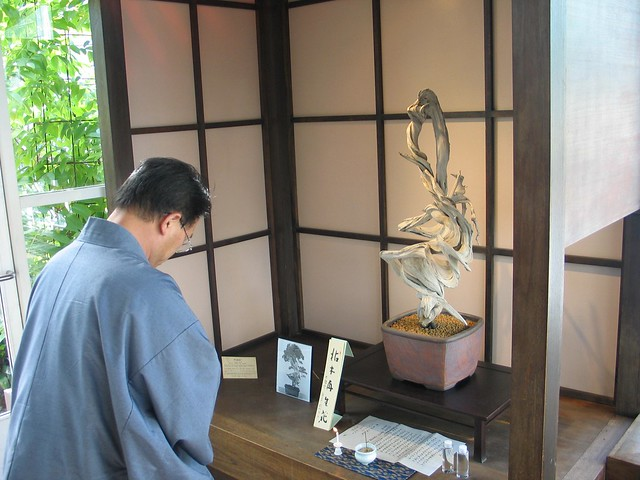 Bonsai Master Seiji Morima paying his respect to the Bonsai Fudo during his visit to BBG.