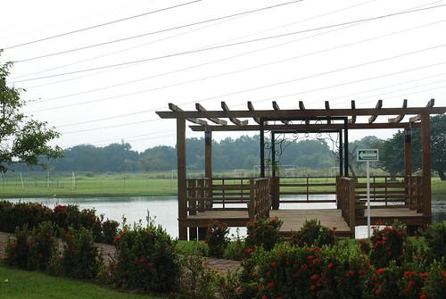 méxico pond deck tamaulipas estanque terraza itesm altamira campustampico