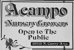 Acampo Nursery Growers Study