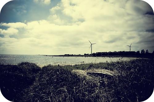 sky beach grass clouds geotagged coast sweden halland falkenberg geo:lat=56898728 geo:lon=12442446