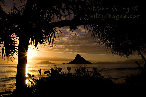 hat sunrise hawaii oahu silohuette sunstar chinamans anawesomeshot