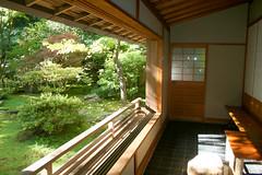 backyard, room, property, porch, eco hotel, estate, real estate,