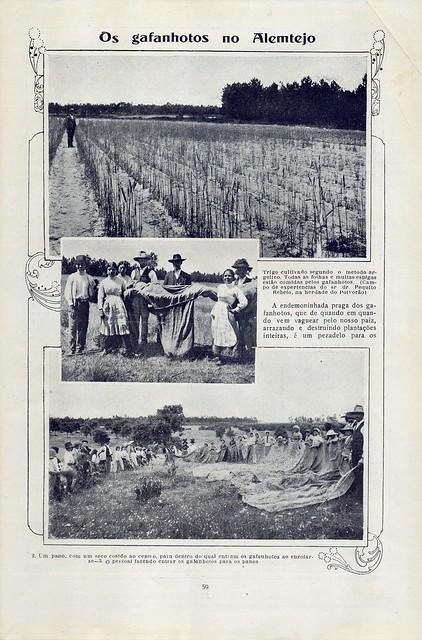 Ilustração Portugueza, No. 543, July 17 1916 - 24