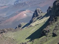 Haleakala National Park, Maui: Kalahaku Overlook - Vegetation