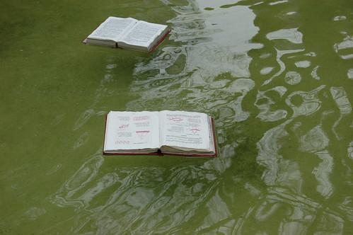 Livros flutuando na fonte
