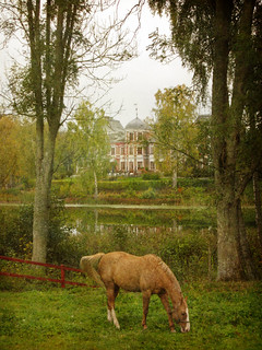 Horse, trees, castle symmetry