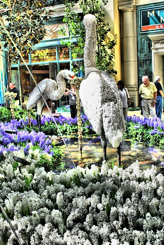 Bellagio Crane effects