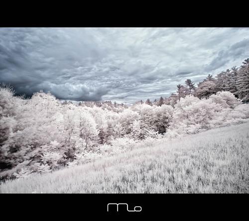 ny newyork canon landscape ir photography photographer lakegeorge infrared converted nik rebelxt dri magicforest photomo 665nm digitalexposureblending mikeorso