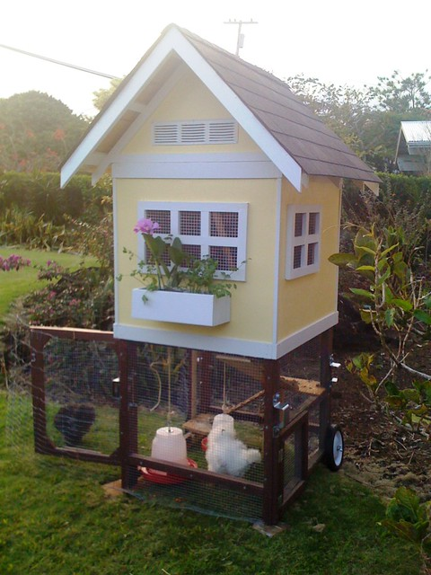 Lily and Daisy's condo