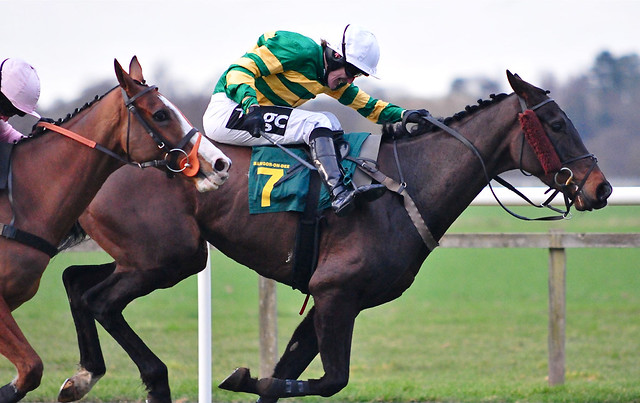 3310060198 82df84583c z - Why 2015 will be a Vintage Year for the Grand National