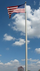 Flag waving #7