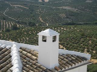 Una chimenea blanca contra el mar de olivos