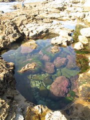 boulder, river, tide pool, geology, stream bed, rock, pond,
