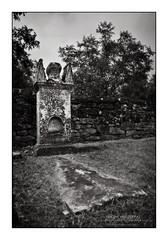 Creepy Grave