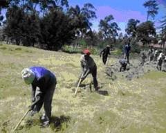 Renden til vandrørerne graves