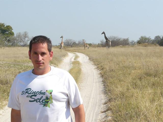Sele en Botswana. Hay jirafas detrás